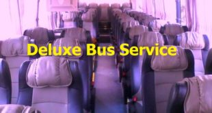deluxe bus service